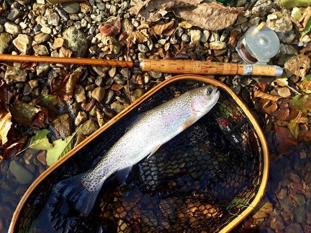 flyfishing photo